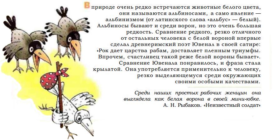 Фразеологизм белая ворона в картинках