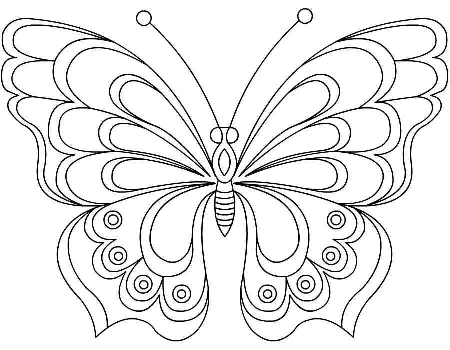 Бабочки раскраска играть