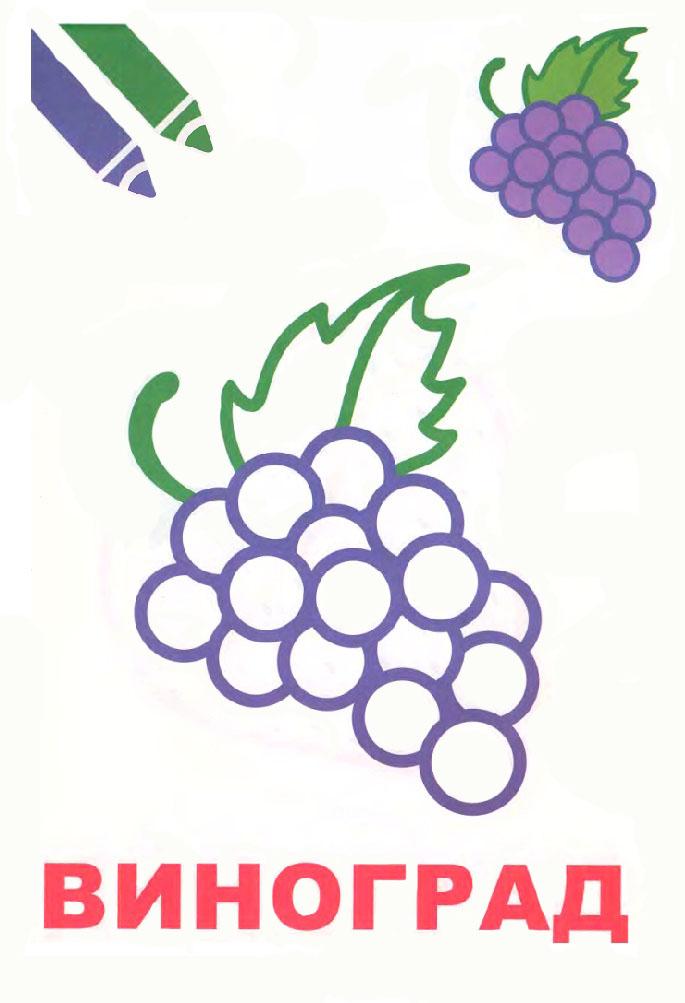 Раскраска Разукрась виноград | Раскраски Овощи и фрукты