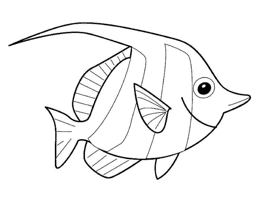 Раскраска Рыба клоун   Раскраски Рыбы