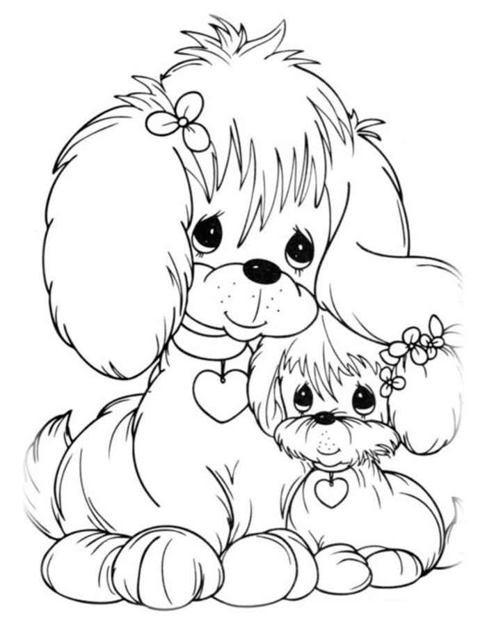 Раскраска Японский хин | Раскраски Собака