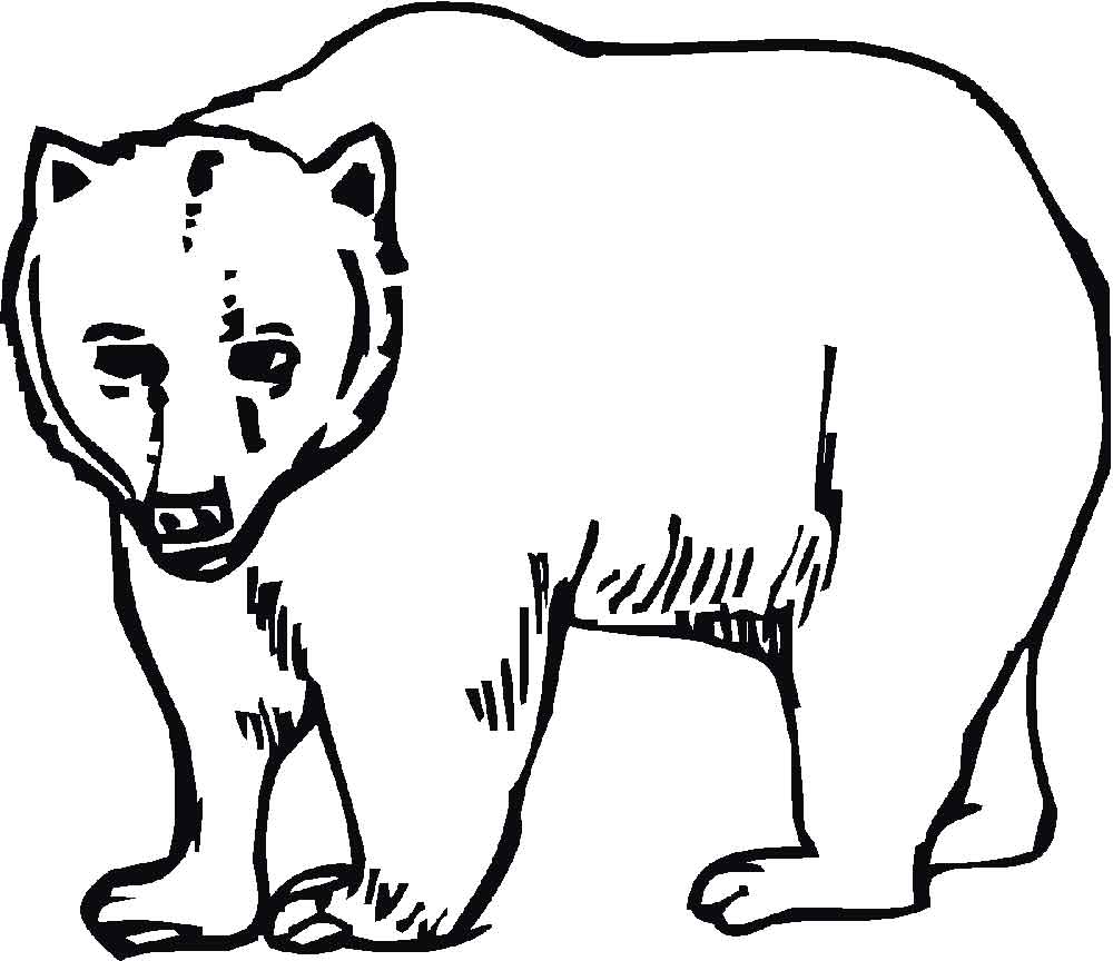 All about Polar Bear With Baby Coloring Page Free Printable ...