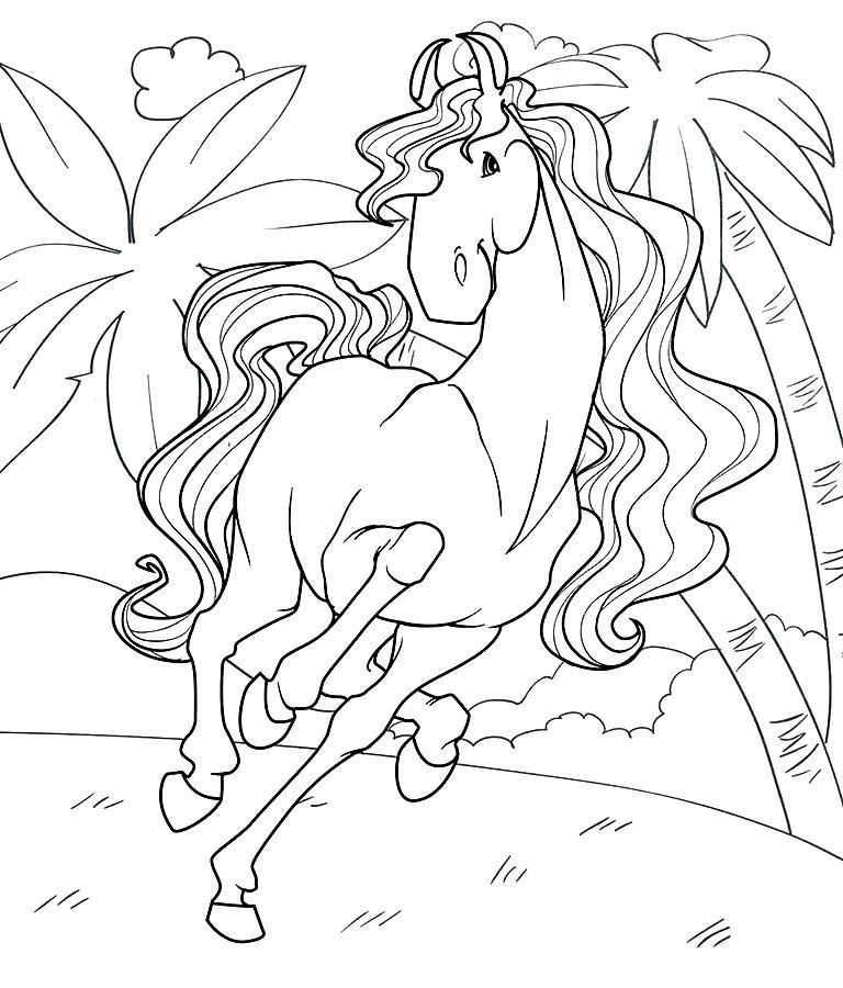раскраска лошадь породы аргентинская раскраски лошадь