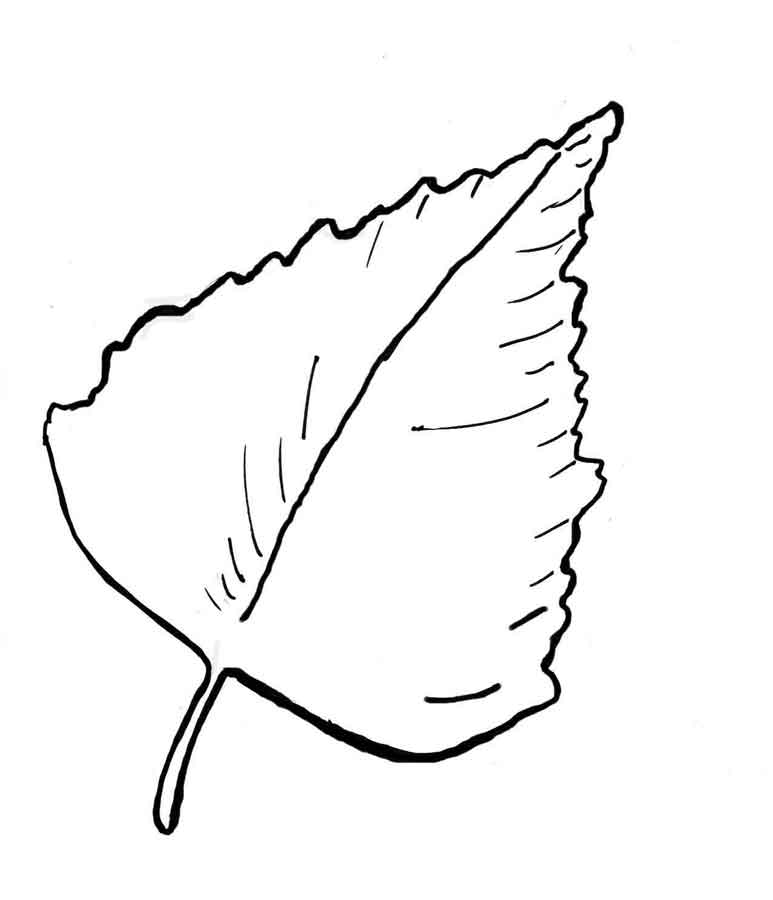 Картинка листочек раскраска
