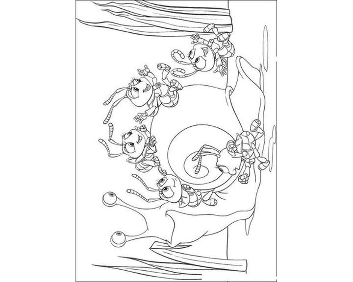 Раскраска Улитка и муравьи | Раскраски Флик