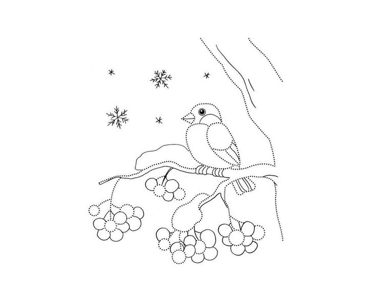 Картинка раскраска снегирь на ветке рябины