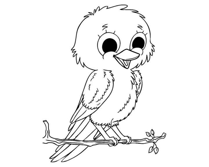 раскраска таинственная птица раскраски птицы