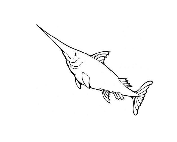 раскраска рыба меч раскраски рыбы