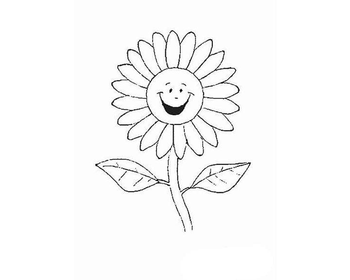 Раскраска Рипсалис   Раскраски Цветы