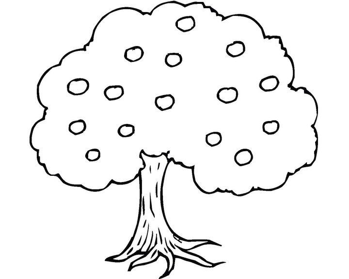 Раскраска Посадка вишни | Раскраски Деревья