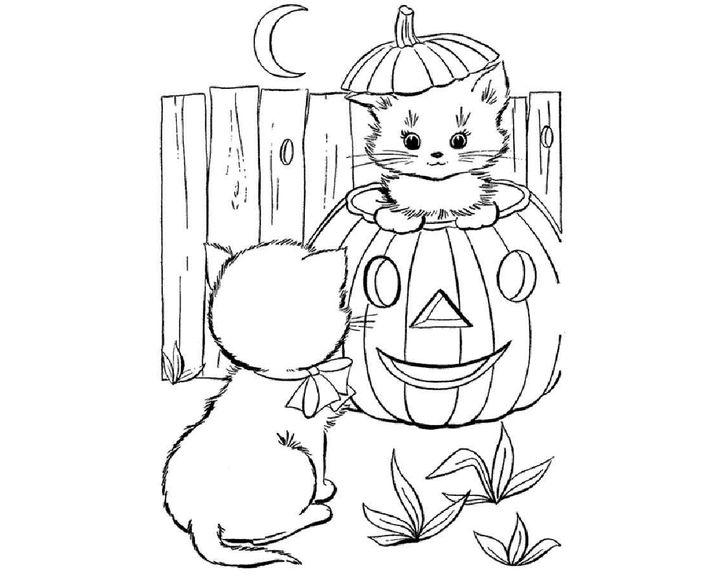 Раскраска Кошка пароды Персидская | Раскраски Кошки