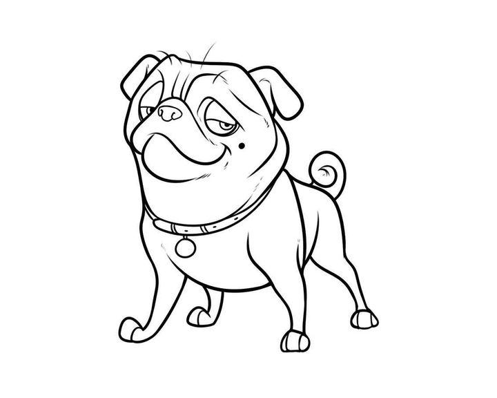 Раскраска Бульмастиф | Раскраски Собака