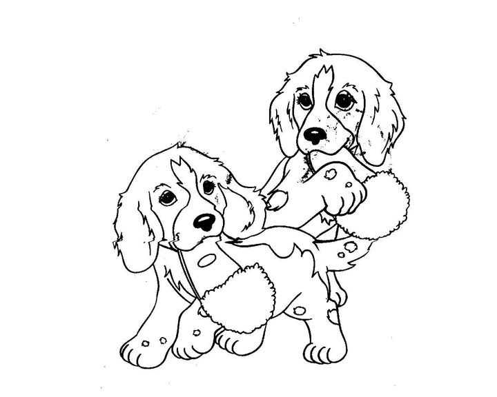 Раскраска Мопс | Раскраски Собака