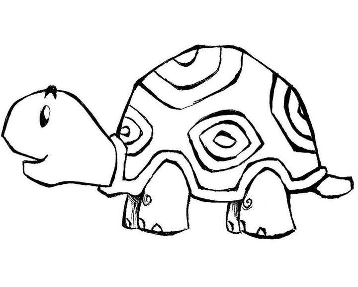 Раскраска Черепаха с узорами | Раскраски Животные