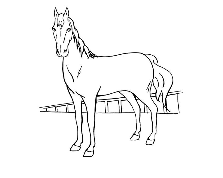 раскраска лошадь породы ирландская тяжелоупряжная