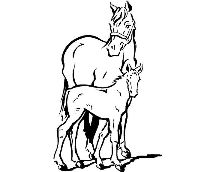 раскраска лошадь породы аппалуза раскраски лошадь
