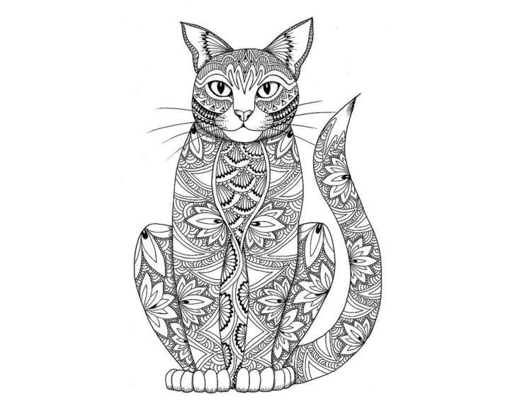 раскраска кошка ушастик раскраски антистресс