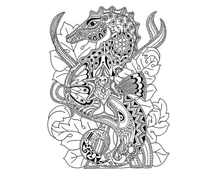 раскраска морской конек раскраски антистресс