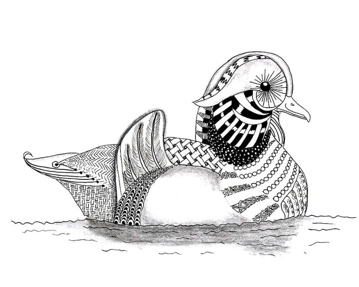 раскраска утка раскраски антистресс
