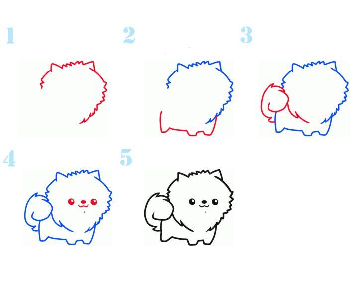 Рисуем Шпицу поэтапно для детей.